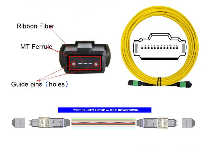 12 Core APC SM 20m MTP MPO Patch Cord  9 / 125 Single mode LSZH Female to Female 1