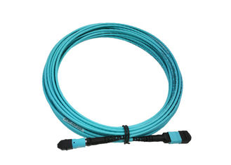 China Data Centre 1m MTP Trunk Cable Female To Female 12 Fibers SM OM1 Customized supplier
