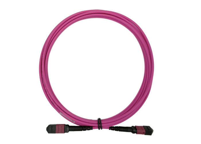 Fiber Optical MTP MPO Patch Cord 5M OM4 24 Core Magenta Low loss 0.3dB